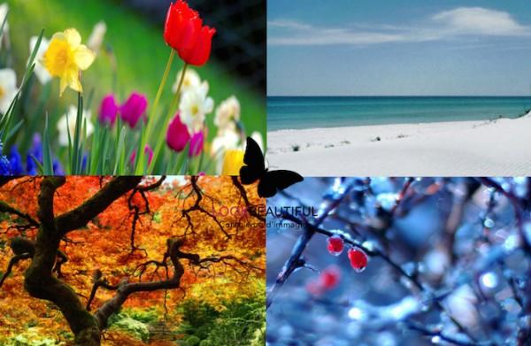 colorimetria-coloriamici-testcromatico-estate-primavera-autunno-inverno